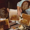 HonningSkraelle